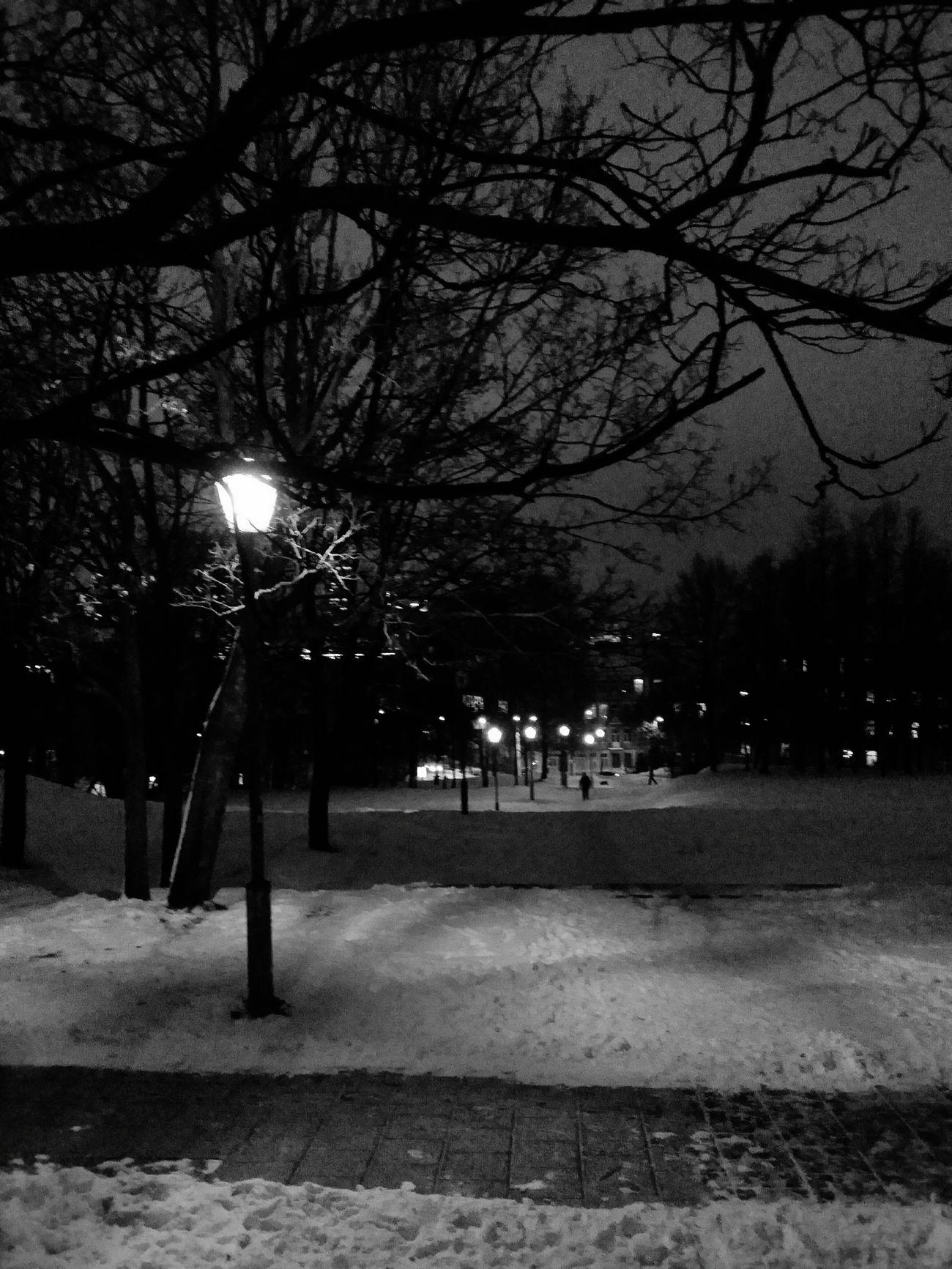 long way round EE_Daily: Black And White Stairporn Lightporn Night Walk Night Lights Monochrome Blackandwhite Winterwonderland Streetphoto_bw Vilnius