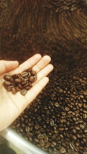 Roasting coffee beans with Probat. Philippines Supportlocalbeans Wheninlipa Baristalife Check This Out Eyeem Philippines Eyeemcoffee Cafedelipa Supportlocalcoffeeshop Barista Girl!