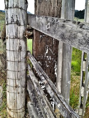 OnTheFeNcE at idaho by Stacy Ericson