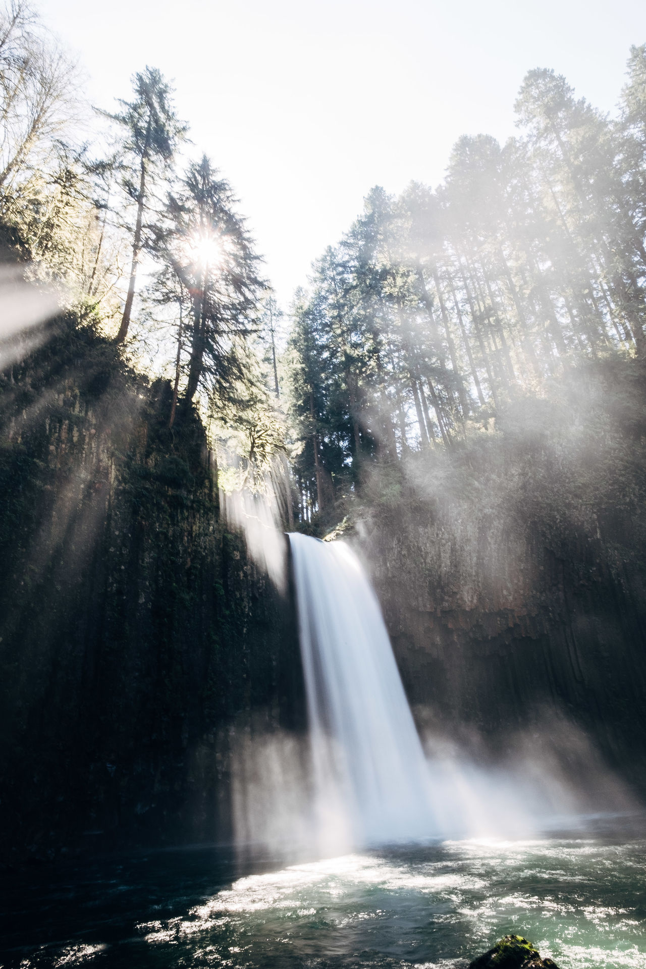 Ray Water Motion Waterfall Tree Nature Outdoors Beauty In Nature No People Power In Nature Scenics Tranquil Scene Morning The Great Outdoors - 2017 EyeEm Awards Travel Destinations Oregon Tranquility Water