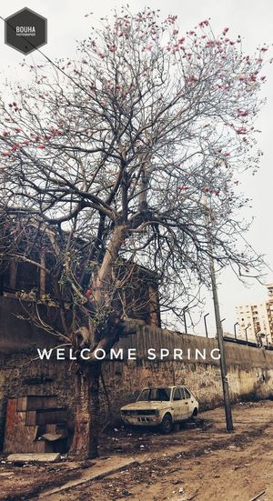 Welcome apring Text Transportation Communication No People Railroad Station Outdoors Day Sky First Eyeem Photo
