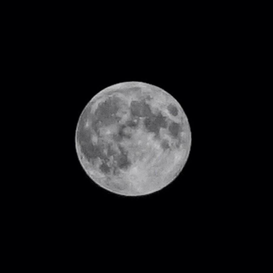 Harvest Super Moon Rising Over Gastown Moon