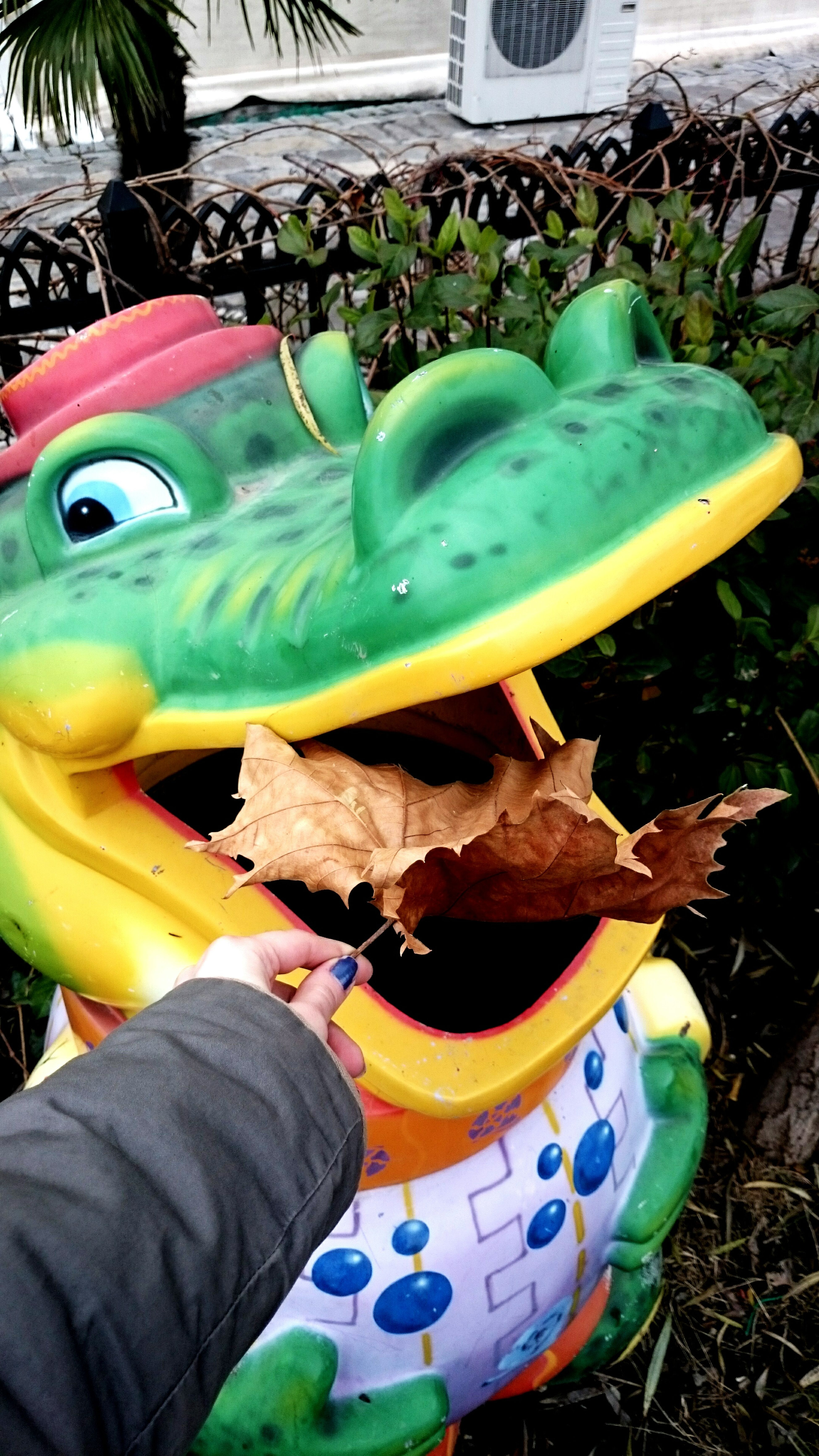Sweet&hungry Crocodile Eating A Leaf😋 Sweet Moments 😄