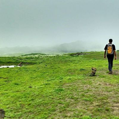 Lonely Walk Nature Natural flower flowers scenery beautiful grass mountains mountain clouds rain monsoon lake goodmorning morning anjanery nasik nashik devlali deolali happiness amazing friendship @igers_india @maharashtra_ig @natgeo @instagram @thetimesofindia @india_91