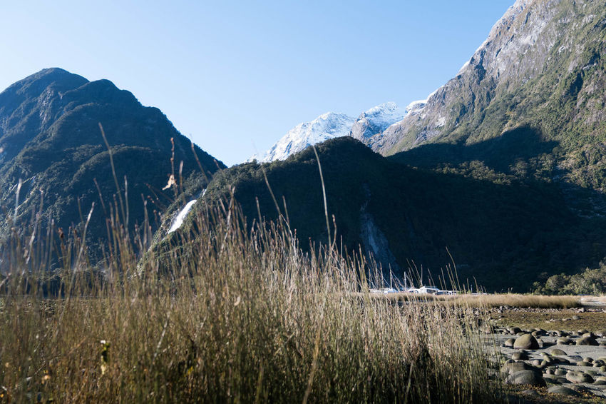 Milford Sound Beauty In Nature Clear Sky Cold Temperature Day Grass Landscape Mountain Mountain Range Nature New Zealand No People Outdoors Scenics Sky Snow Tranquil Scene Tranquility Winter