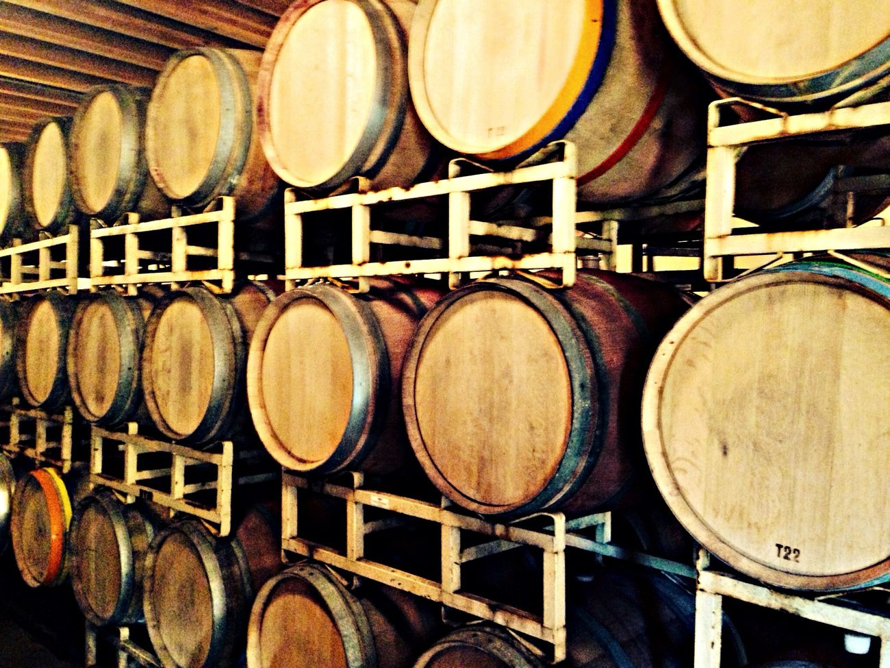 Barrels of fun.