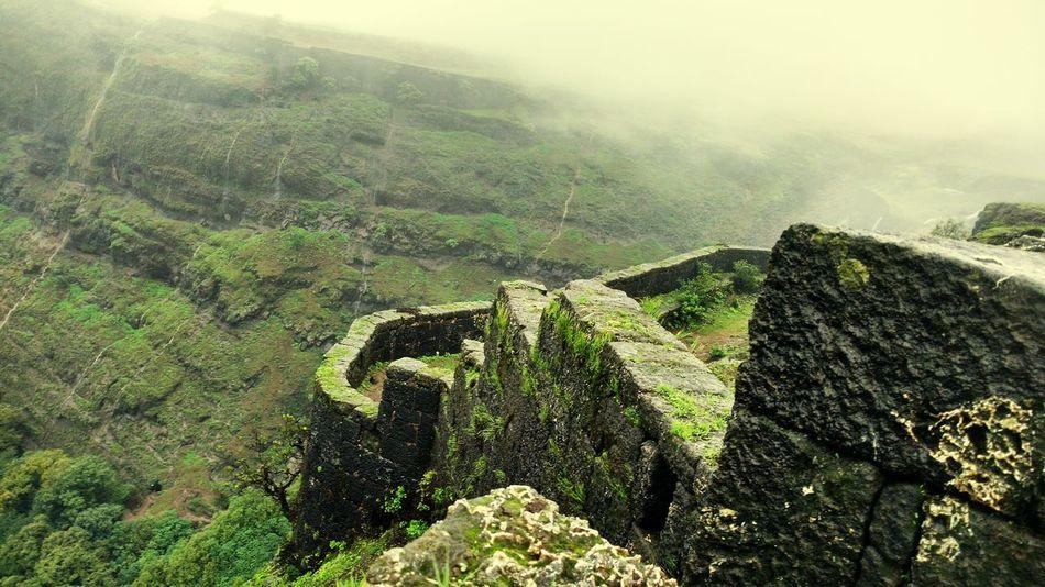 Enjoying The Sights Nice Views Nature Take A Break Mountain Goat On A Hike First Eyeem Photo