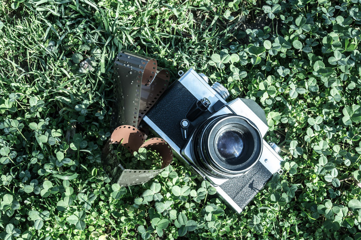 Camera Camera On Grass Film G Green Grass Old Retro Camera Old Retro Camera On Grass Photo Frame Photo Of The Day