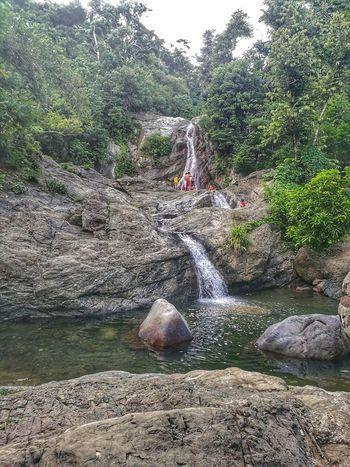 Maribina Falls Water Outdoors Falls Waterfalls In Philippines Swim Diving Jump Ledge Nature