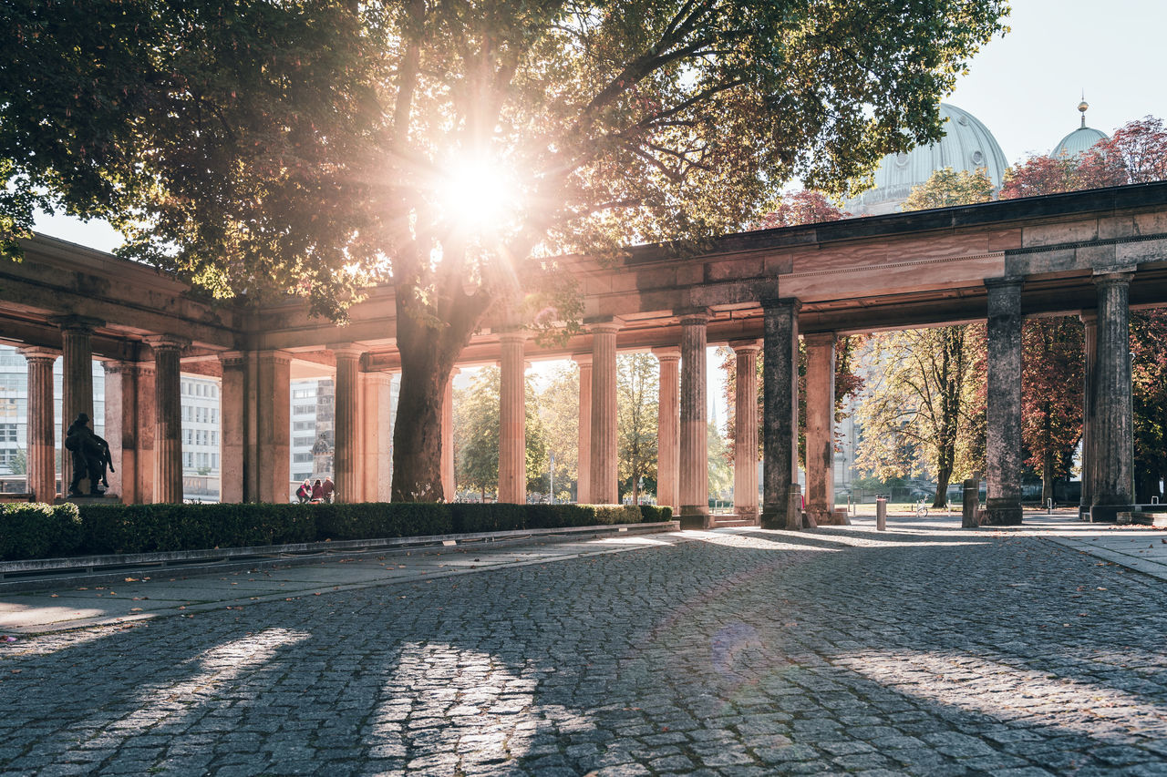 Museum Island| Berlin, Germany 2016 Autumn Autumn Colors Autumnbeauty Berlin Berlin Cathedral Berliner Ansichten Berliner Dom Daybreak Long Shadows Morning Light Morning Sun Museum Island New Delhi Sun Sun Light Sun Light Through Trees