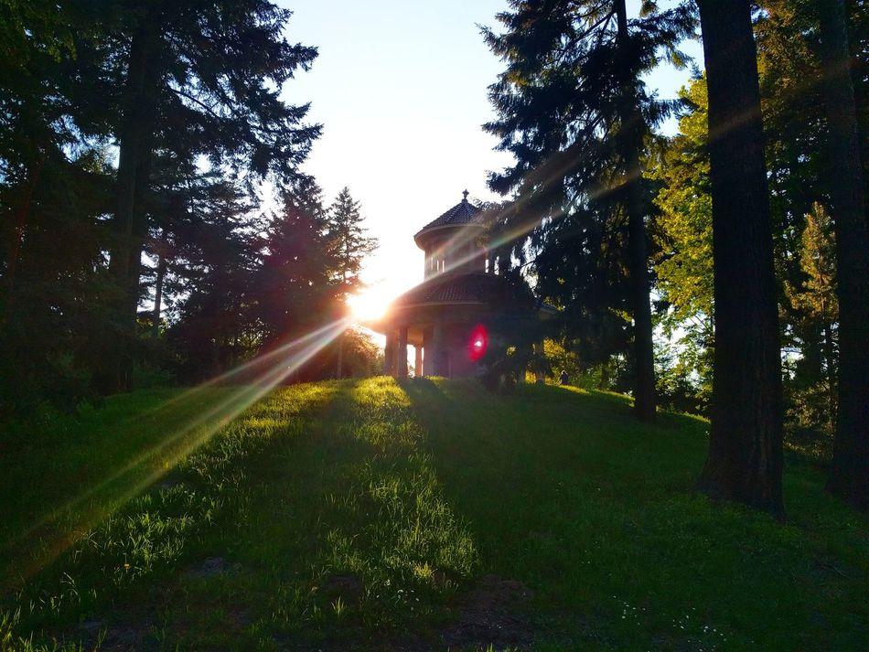 Bremen Pavillon Bürgerpark Lensflares