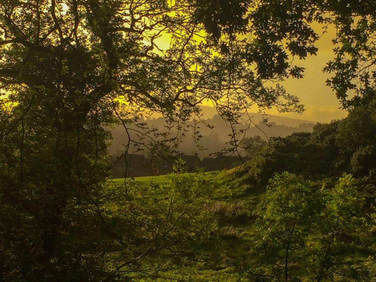 Misty village Northern Ireland Belfast Edenderry