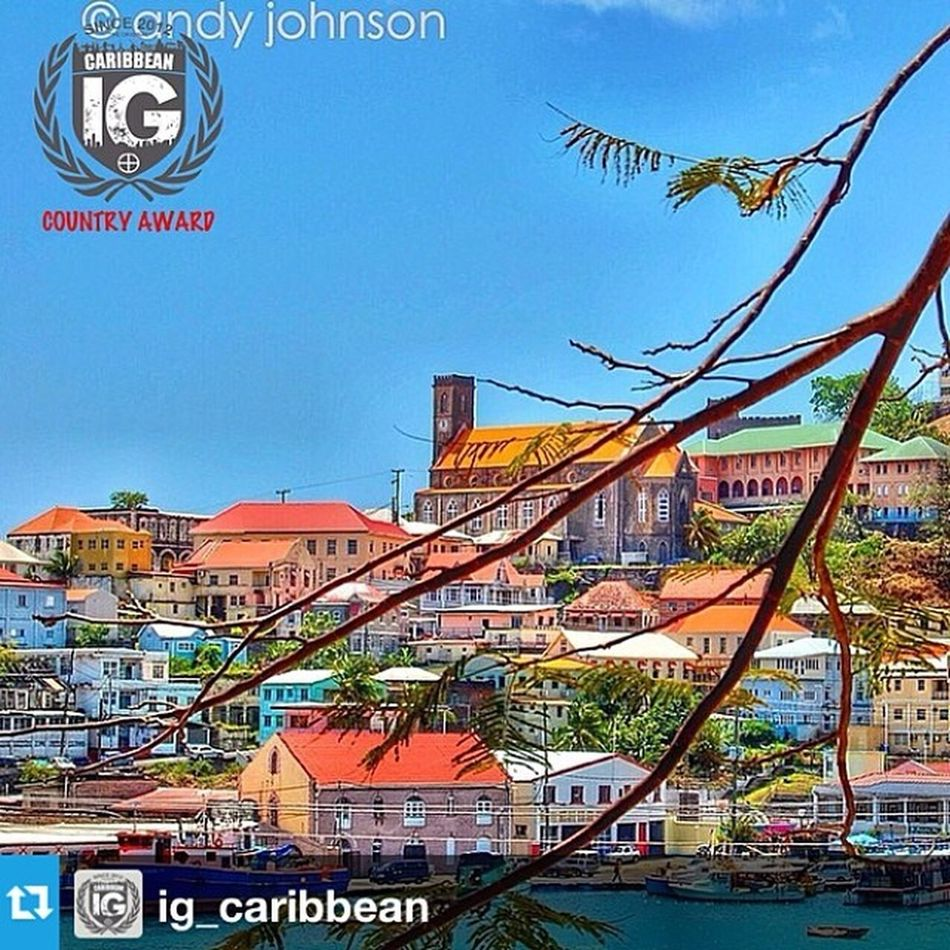 THANK YOU GUYS FOR THE VOTES 🌟🌟🌟🌟🌟🌟🌟🏆🏆🏆 ⊕ Ig Country Award ⊕ • ⊕ One World ⊕ One Award ⊕ • • Ig_caribbean presents the Winner of Regional Country Award • Photo by @duppy__kankera • Country @ig_caribbean • Admin group @jbewa @lunaar @missgery @johnatanbreleur Tag and follow @ig_caribbean Ig_caribbean ————————————————– • Selected by vote ————————————————– Igca_62 @ig_martinique Ig_martinique