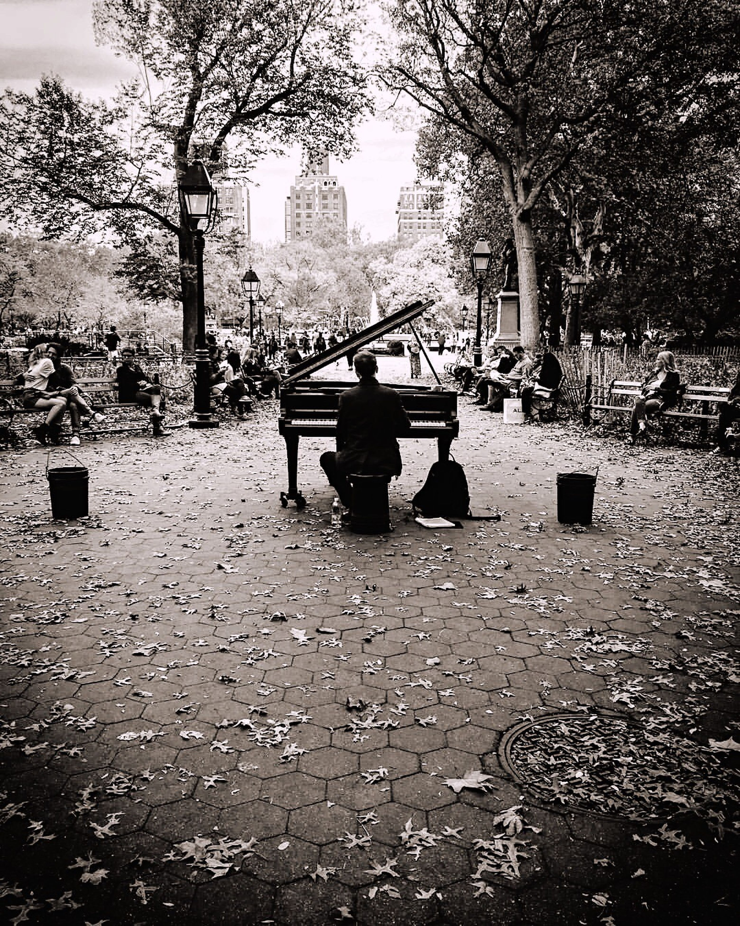 tree, lifestyles, leisure activity, sitting, day, relaxation, city, outdoors, city life, nature, park, casual clothing, empty