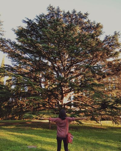 Girl Girl Power Day Freedom Resilience  Tree Big Tree Only Women Nature One Person Sky Spring Sunlight Nature_collection Beauty In Nature Energy Ornamental Garden Colors Outdoors Strength Hug Exploring Nature Photography Light Relax Millennial Pink Art Is Everywhere Place Of Heart Live For The Story The Great Outdoors - 2017 EyeEm Awards AI Now EyeEm Ready   EyeEm Ready   Fashion Stories