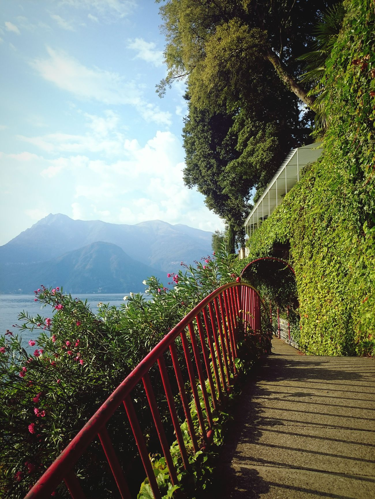 Lakecomo Italy🇮🇹 Summer ☀ Nature Eyeemphotography Walking Around Taking Pictures Sightseeing Enjoying Life Relaxing