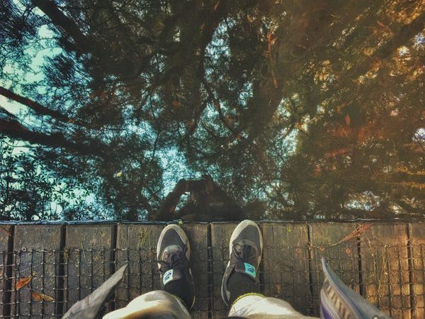 Shoe Human Leg Low Section Tree Personal Perspective One Person Human Body Part Day Leisure Activity Real People Outdoors Nature One Man Only Adult People Only Men Close-up Adults Only Perspectives On Nature
