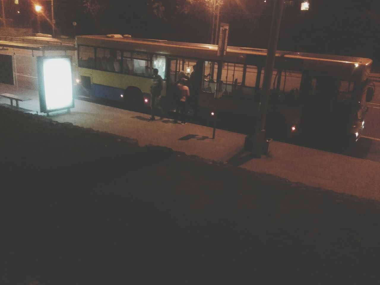 Nightlife Nightbus