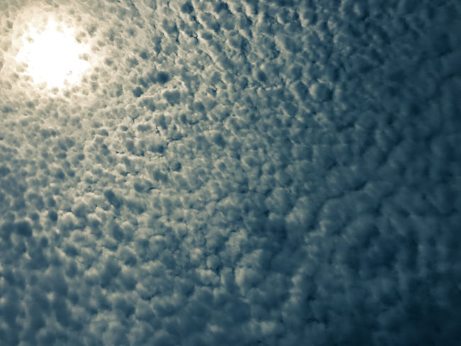 Backgrounds Beauty In Nature Cloud - Sky Cloudscape Cloudy France Les Landes Nature Outdoor Photography Outdoors Sky Travel Photography Traveling Www.gonetosee.de