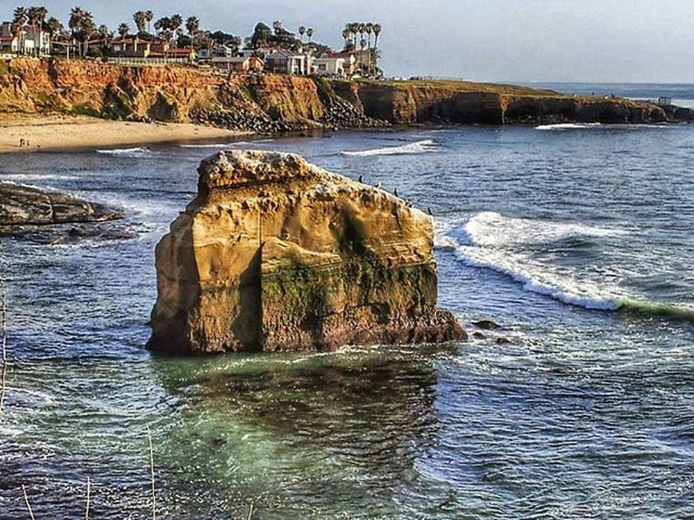 Sandiego California Lajollacove Lajolla Water Cliffs Nature_shooters Nature Naturelove Naturephotography Nature_perfection Sunshine Rocks Birds Trees View Sunlight Sun Beautiful Instagood