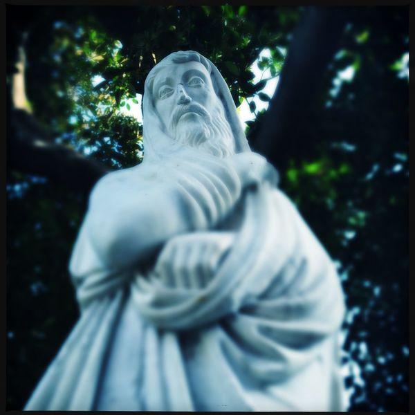 Estatua Franciscojpg