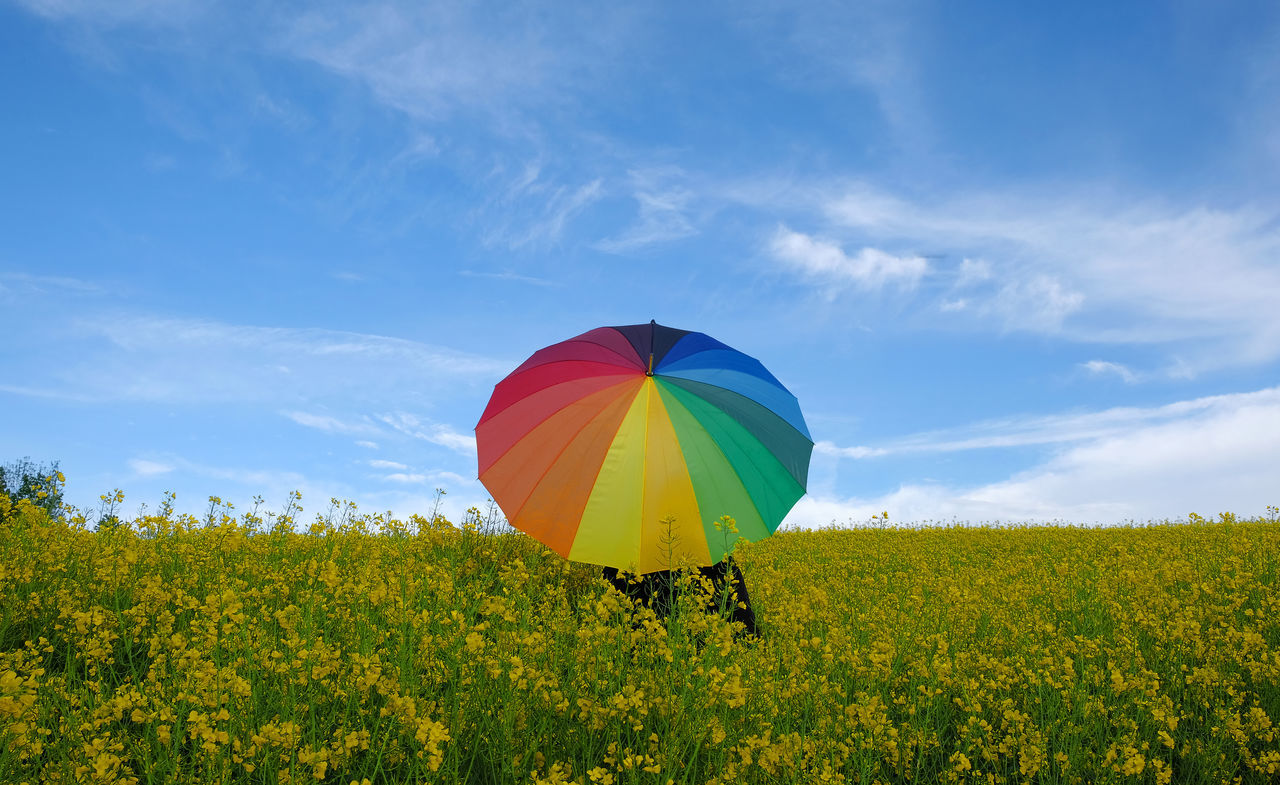 Beauty In Nature Clouds Copy Space Day Field Flower Growth Landscape Men Multi Colored Multi Coloured Umbrellas Nature Outdoors People Protection Rainy Scenics Sky Springtime Sunshine Umbrella Yellow Live For The Story
