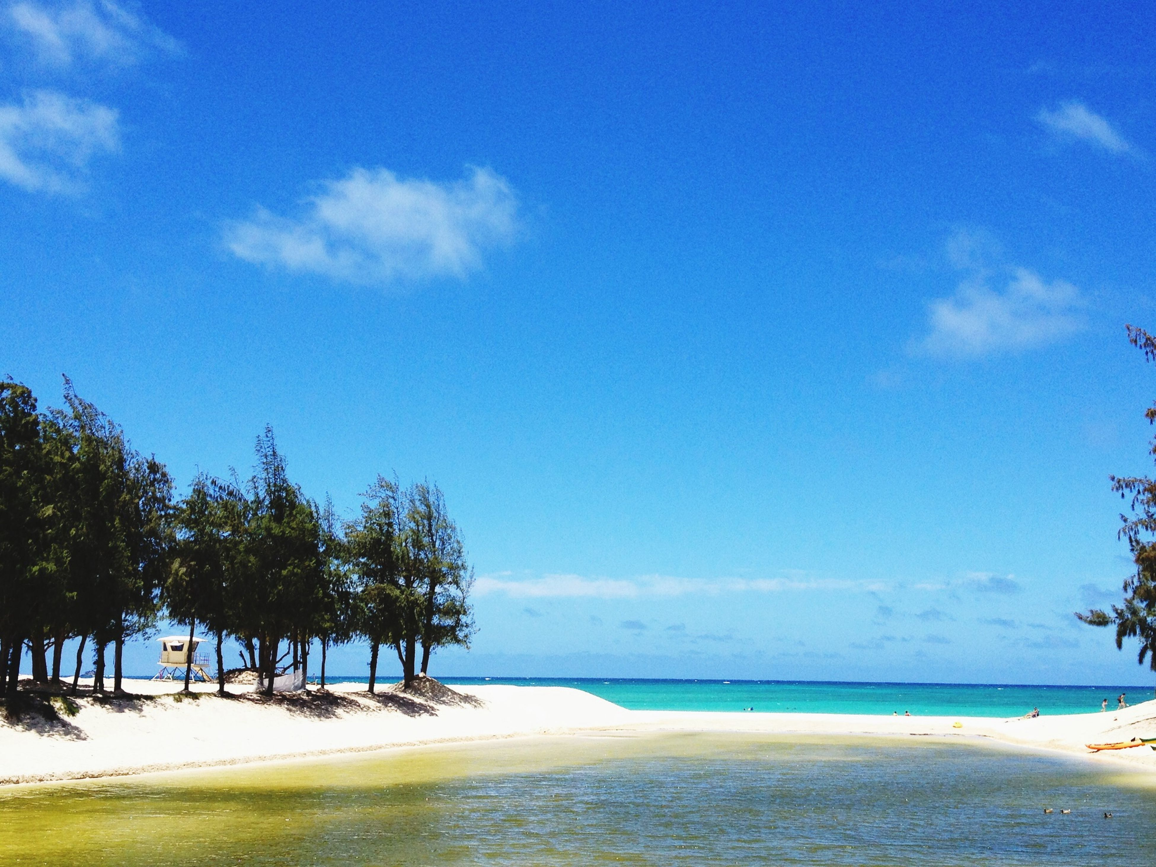 sea, beach, water, tranquil scene, tranquility, sky, scenics, beauty in nature, horizon over water, sand, tree, shore, blue, nature, cloud, idyllic, cloud - sky, palm tree, coastline, vacations