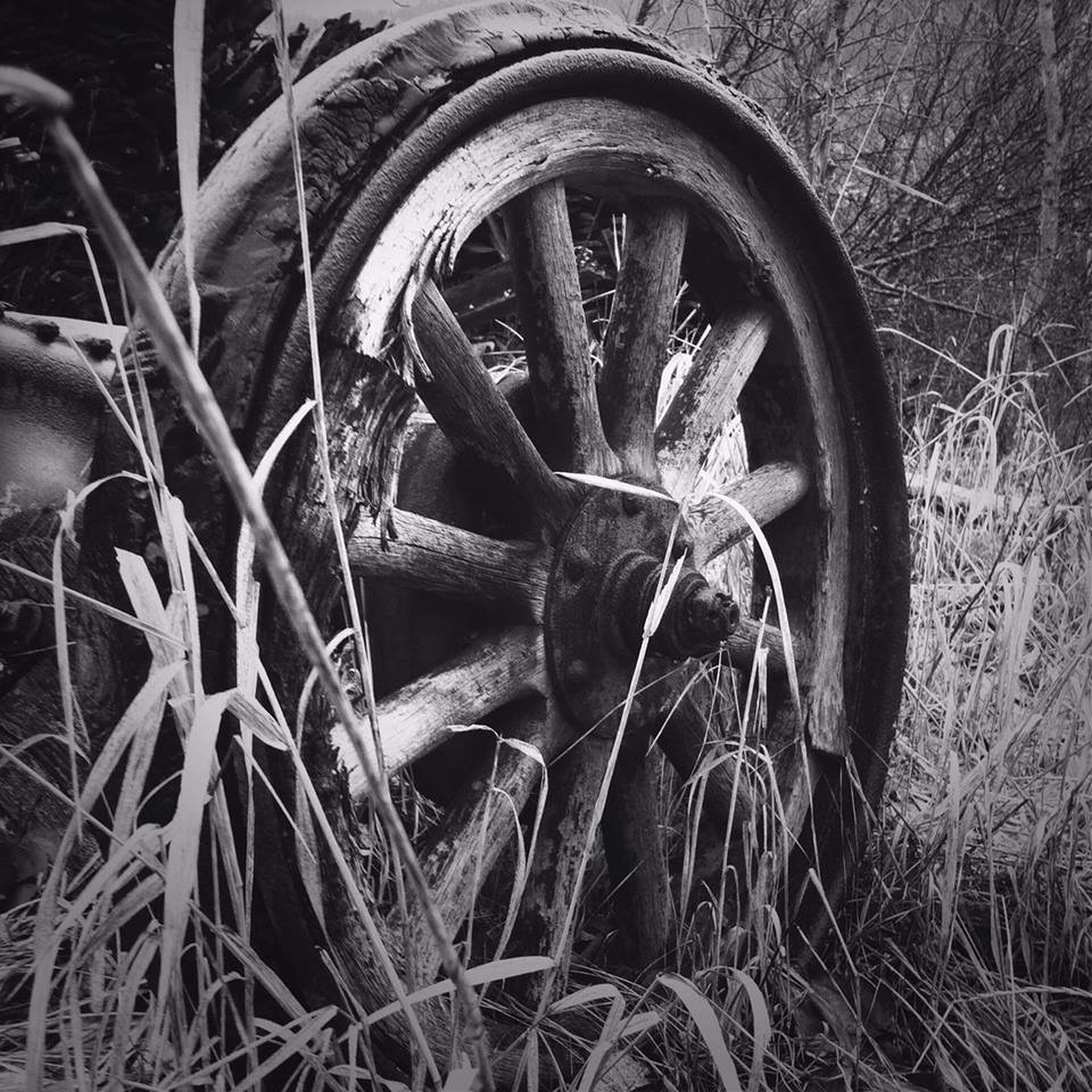 close-up, old, field, abandoned, damaged, rusty, obsolete, deterioration, grass, metal, no people, outdoors, wheel, day, plant, run-down, part of, growth, nature, wood - material