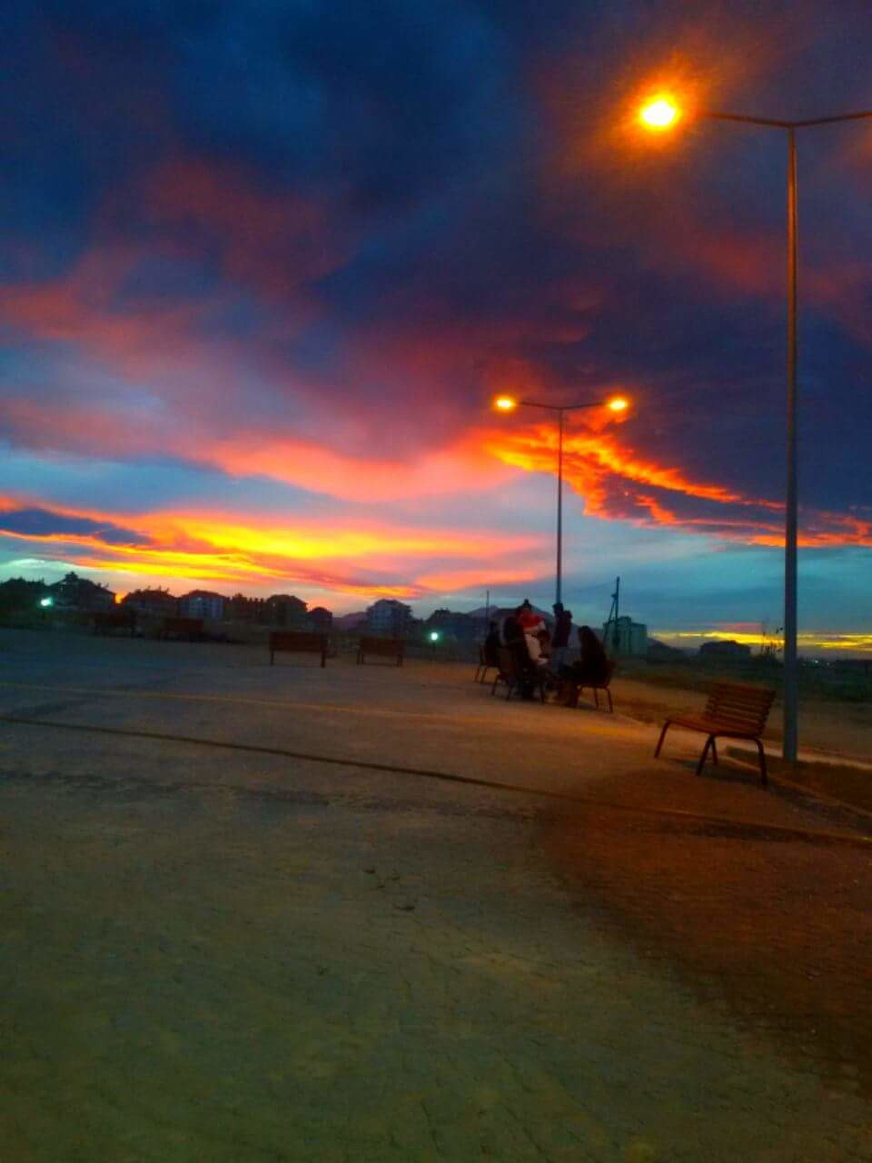 sunset, sky, nature, beauty in nature, cloud - sky, outdoors, illuminated, domestic animals, scenics, beach, no people, animal themes, mammal, night