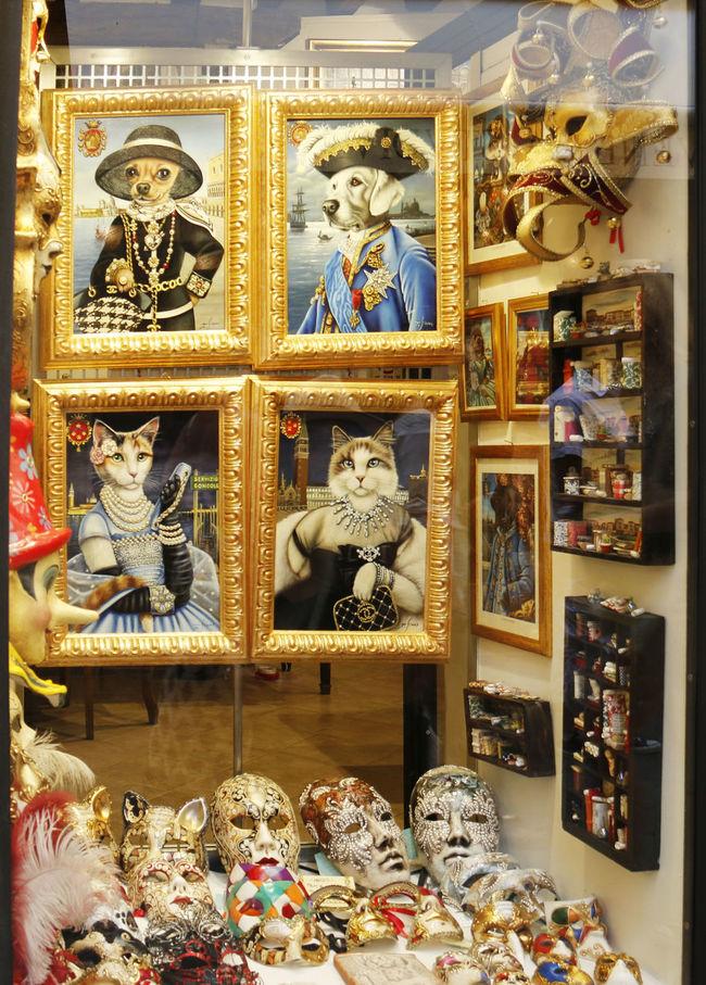 Cat Pictures Cats Italy Masksheet Masquerade Masquerademasks Romantic City Venice Window Window Display