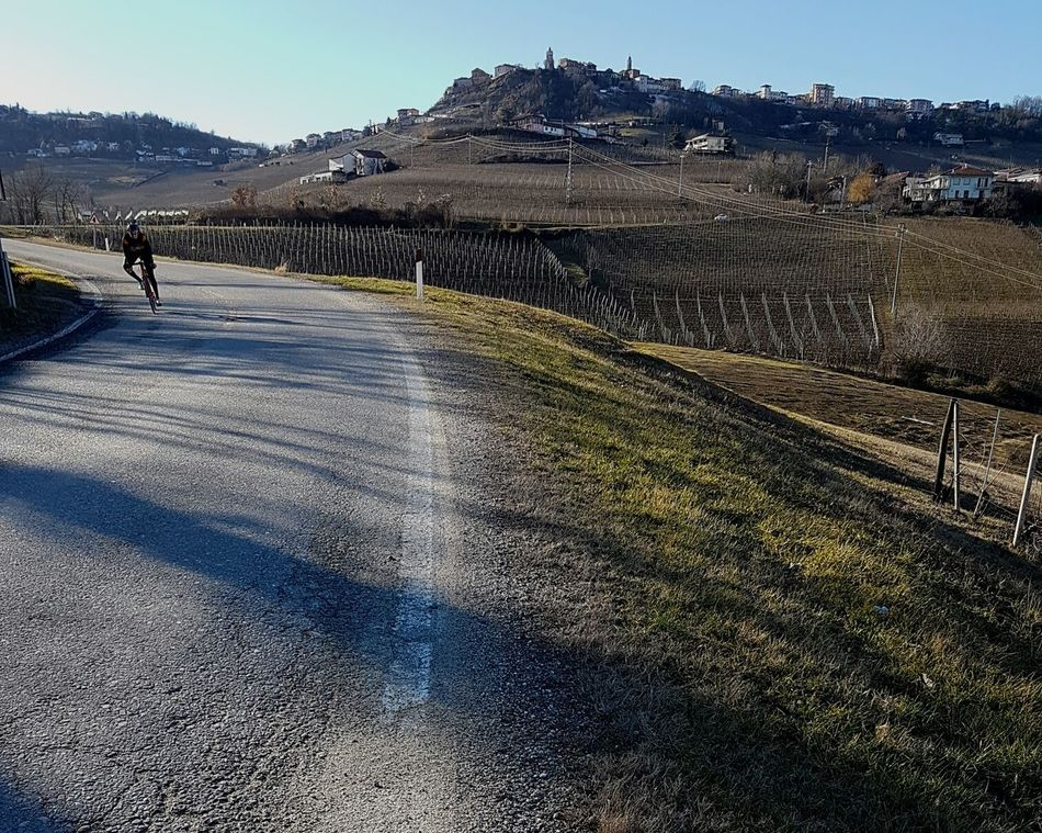 Landscape Nature Tree Outdoors Day Sky Scenic View Clear Sky Langhe Piedmont Italy Vineyards In Winter Barolo Wineyards Agriculture Winter Bicyclist On The Street Travel Destinations