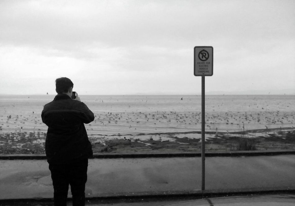Sea Beach Communication Horizon Over Water One Person Outdoors EyeEmNew Here Canada 150 Vancouverisland Landscape Seagulls No Parking Sign