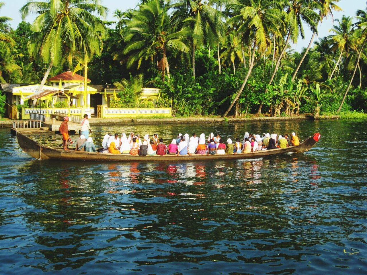 large group of people, nautical vessel, real people, water, men, tree, leisure activity, day, transportation, women, outdoors, lifestyles, vacations, nature, palm tree, mode of transport, river, togetherness, travel, rafting, rowing, sitting, adventure, oar, beauty in nature, teamwork, sky, adult, people, adults only