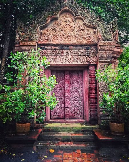 Open the door and.... Plant Entrance Door Day Ivy Architecture Growth Outdoors No People Leaf Tree Nature Thai Style Thai Architecture Built Structure Architecture Thai Temple Entrance Entrance Portal