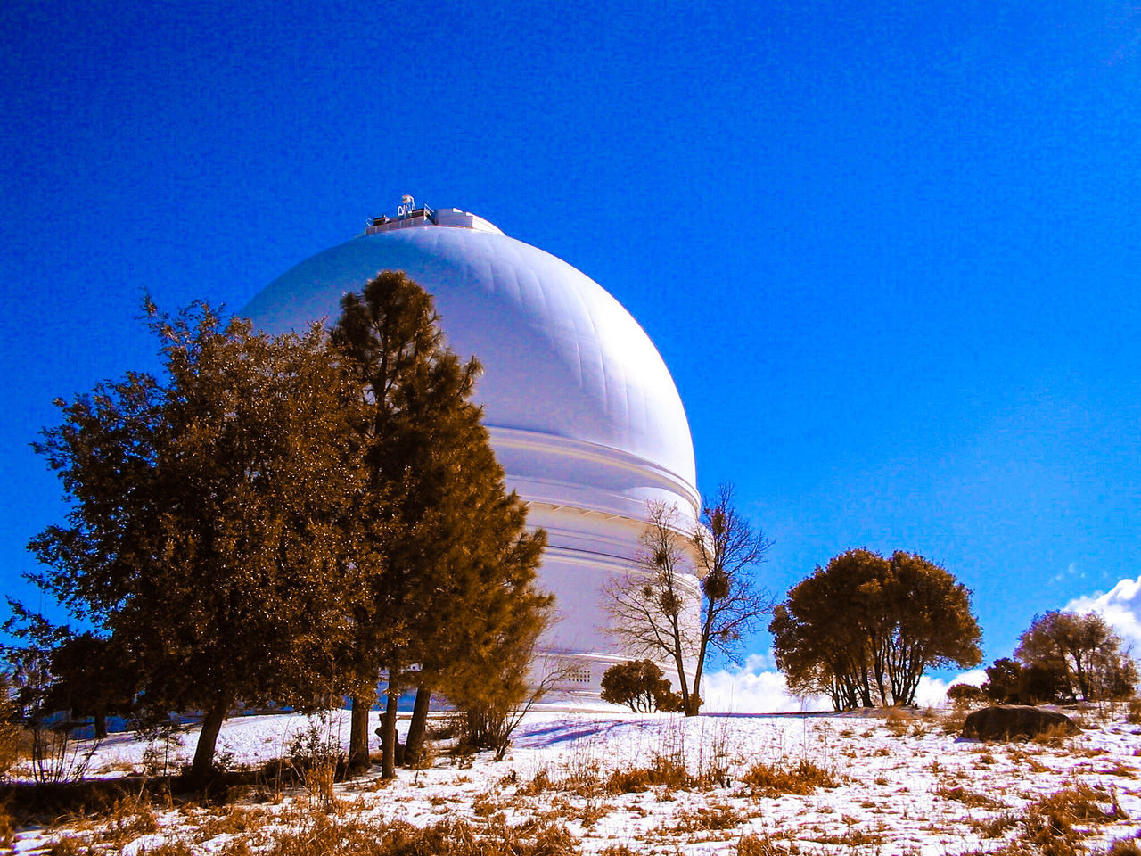 Travel Destinations Built Structure Outdoors Dome Building Exterior No People Science Clear Sky Tree Architecture Astronomy Sky Observatory Mt Palomar Observatory