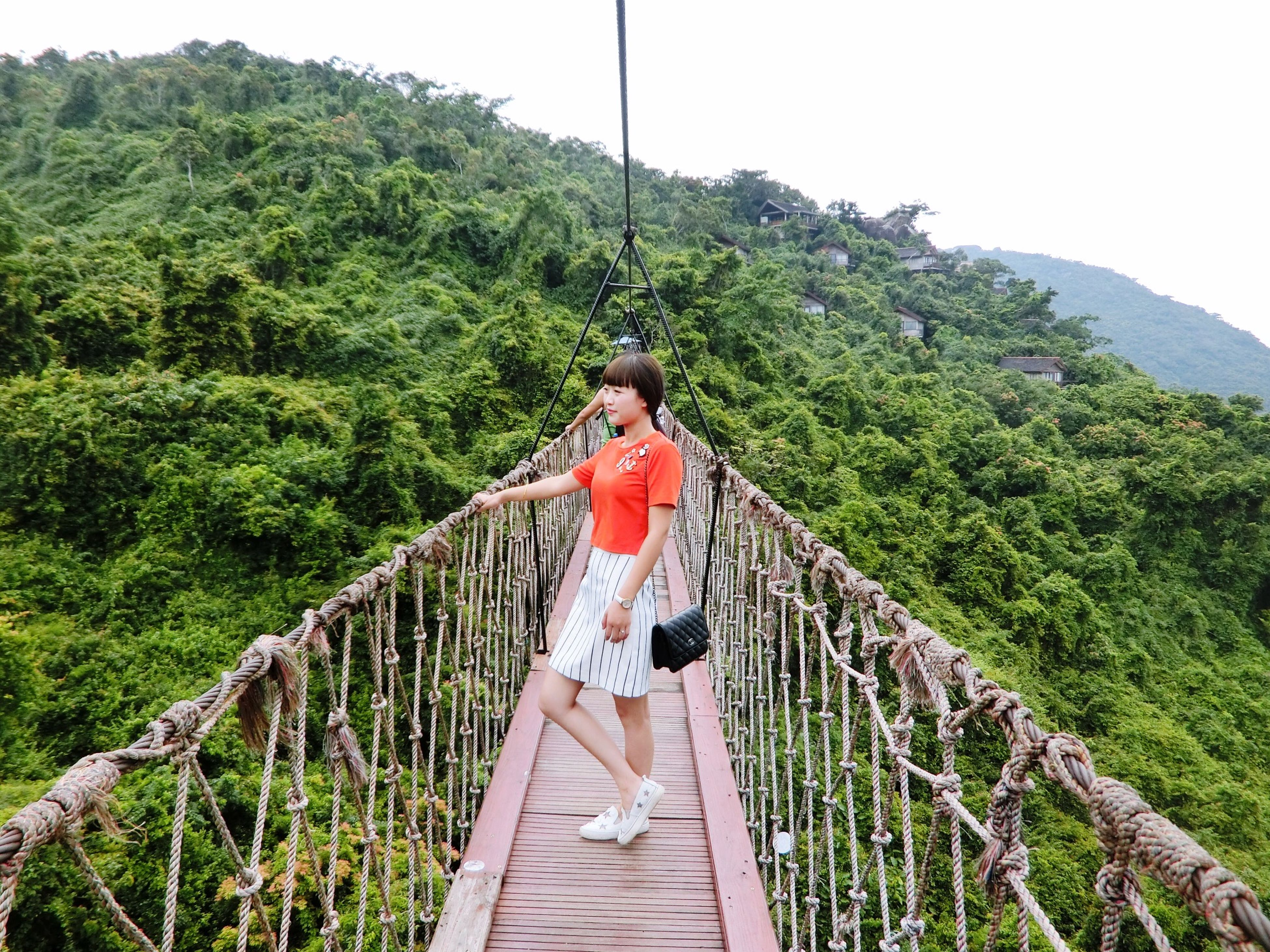 mountain, tree, railing, green color, footbridge, plant, nature, tranquility, built structure, growth, connection, forest, tranquil scene, bridge - man made structure, beauty in nature, mountain range, scenics, sky