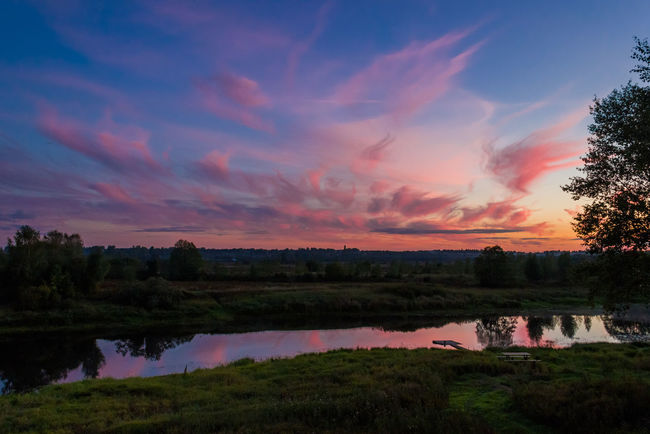 Evening. The river. Beauty In Nature Beauty In Nature Cloud - Sky Clouds Evening Evening Sky Lake Landscape Mologa Nature No People Outdoors River Russia Scenics Sky Sunset Tree Water