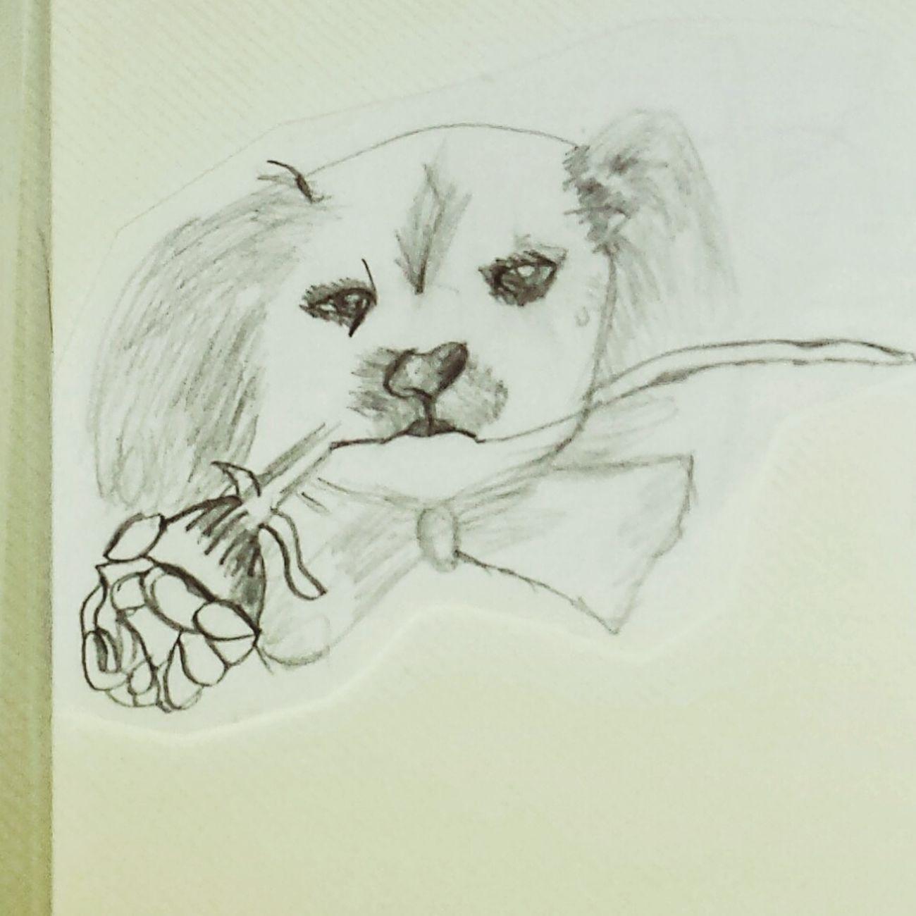 Relaxing Hi! Dog❤ Doglover Drawing My Draw ♥ Art, Drawing, Creativity Enjoying Life