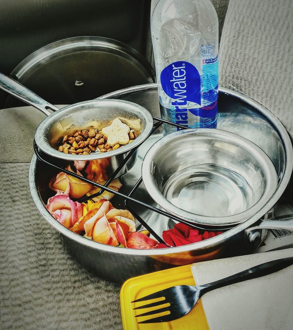 Food And Drink No People Irwin Collection EyeEm Best Shots Dog Food Flowers Water Bottle  Pan Road Trip! Car Interior Carefree Ready To Go