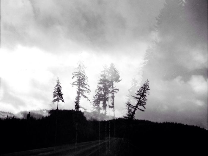 Black & White Landscape Nature My Best Photo 2014