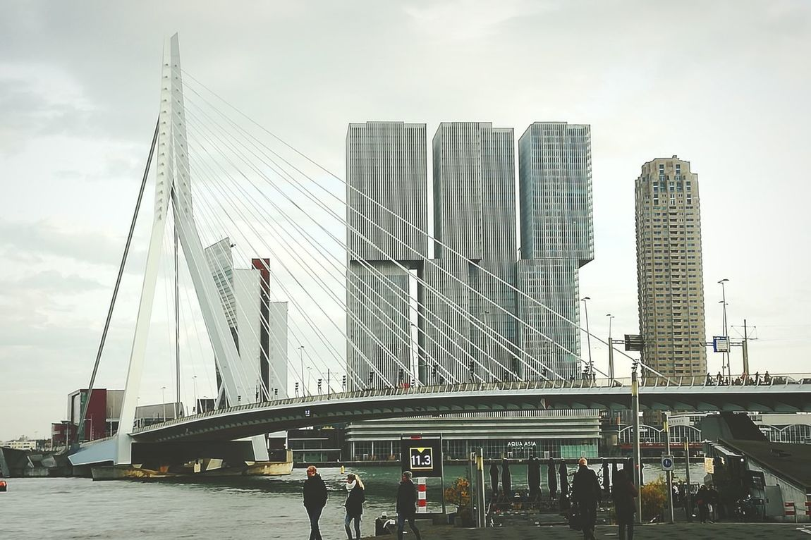Rotterdam Rotterdam Architecture Rotterdam Centraal  Architecture Skyscraper City Travel Destinations Bridge - Man Made Structure Outdoors Modern Cityscape Building Exterior Suspension Bridge Day Connection Adapted To The City HuaweiP9 Huawei P9 Leica Huaweiphotography Holland❤ Holland Pays Bas Tourism Buildings Architecture Buis The City Light Minimalist Architecture