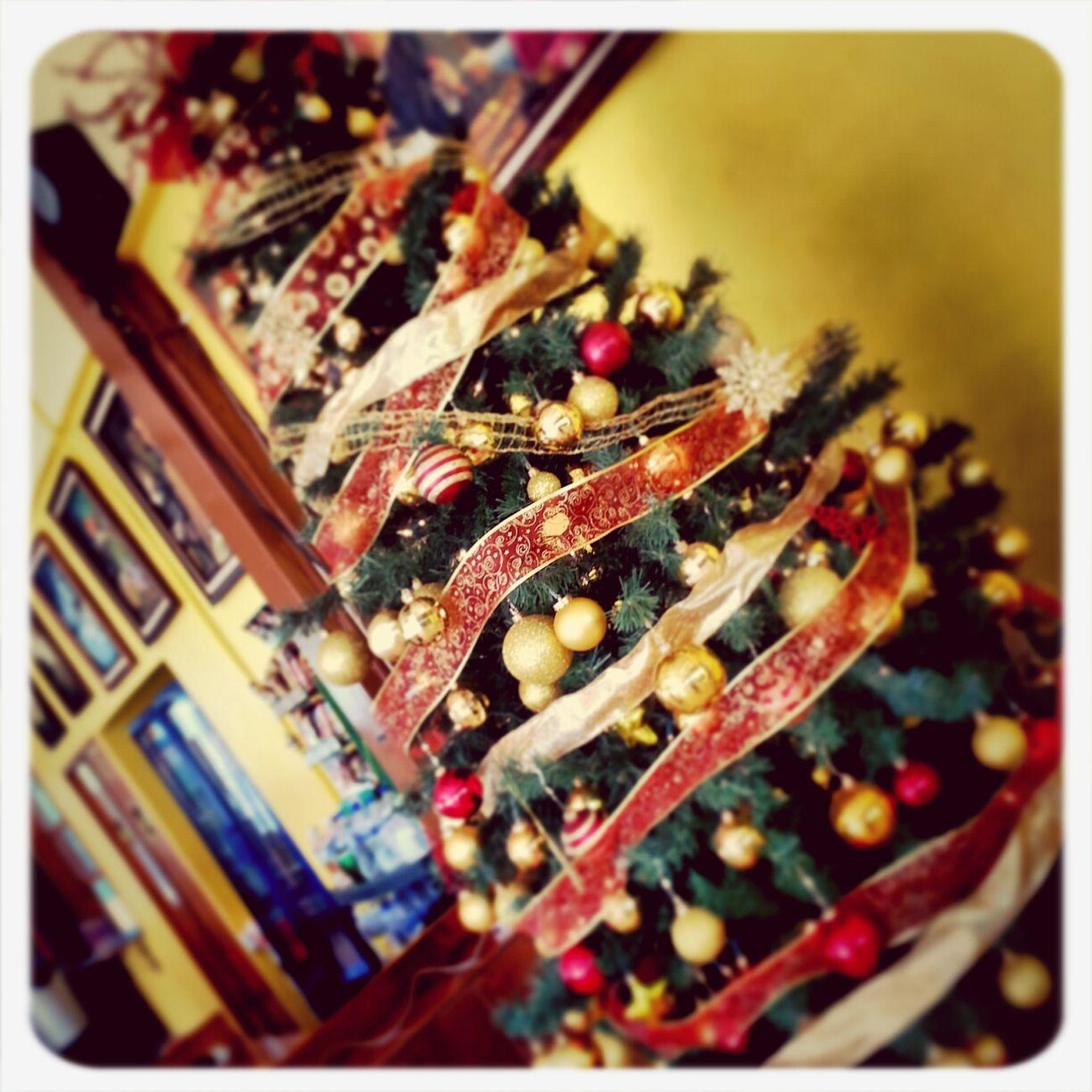Llegó la Navidad a Paraíso. ..!!!