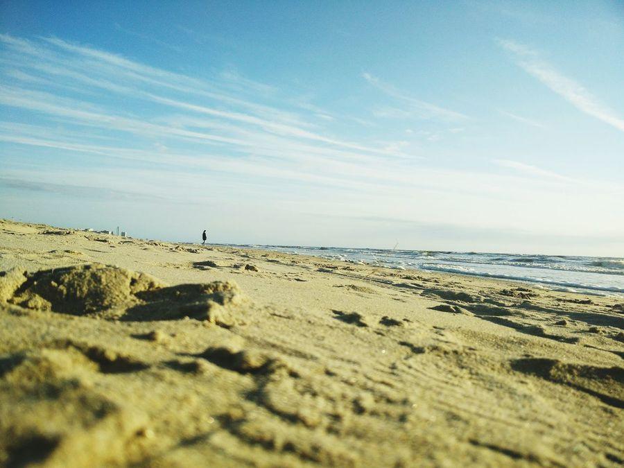 Bloemendaal Nederland Ocean Zandvoort