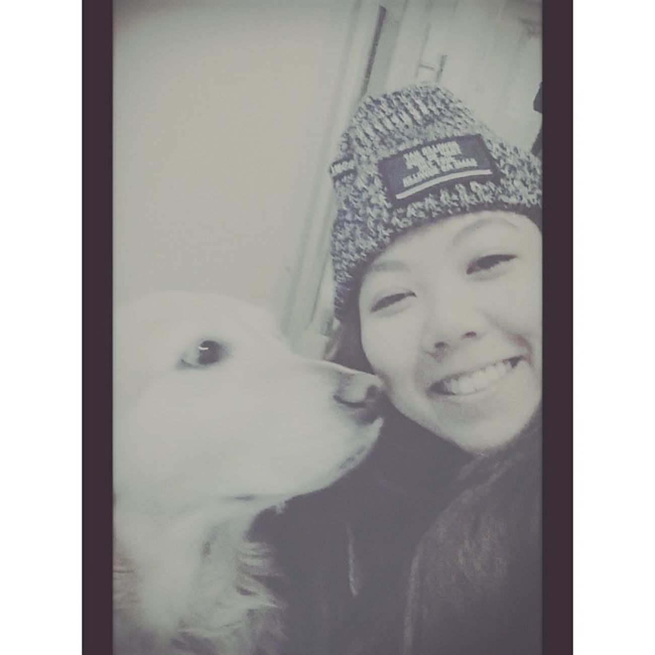 Selfies Raburado Dog Selfietogether Kyoto 千鳥居