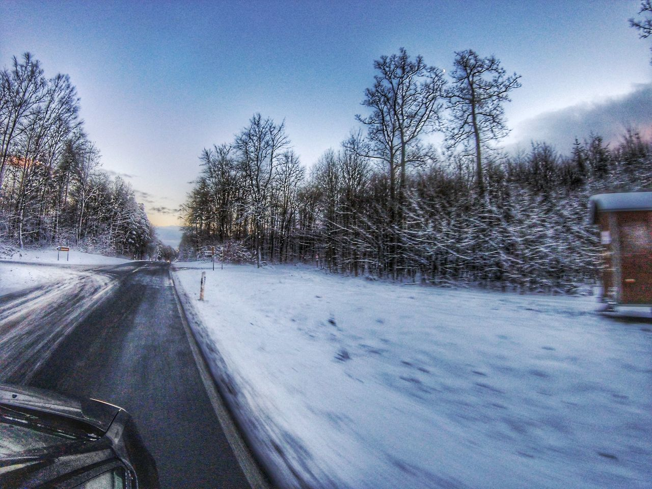 Sunset Cold Winter Wonderland Winter Gopro Session Gopro Snapseed Goprophotography Goprooftheday Goprohero4 Snow Street Tree Trees Trees And Sky EyEmNewHere