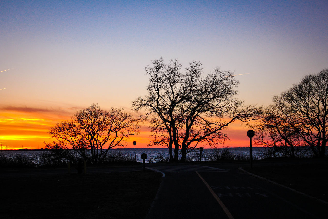 sunset, orange color, silhouette, tree, beauty in nature, scenics, sky, nature, bare tree, road, tranquil scene, tranquility, outdoors, no people, the way forward, sun, transportation, landscape, travel destinations, clear sky