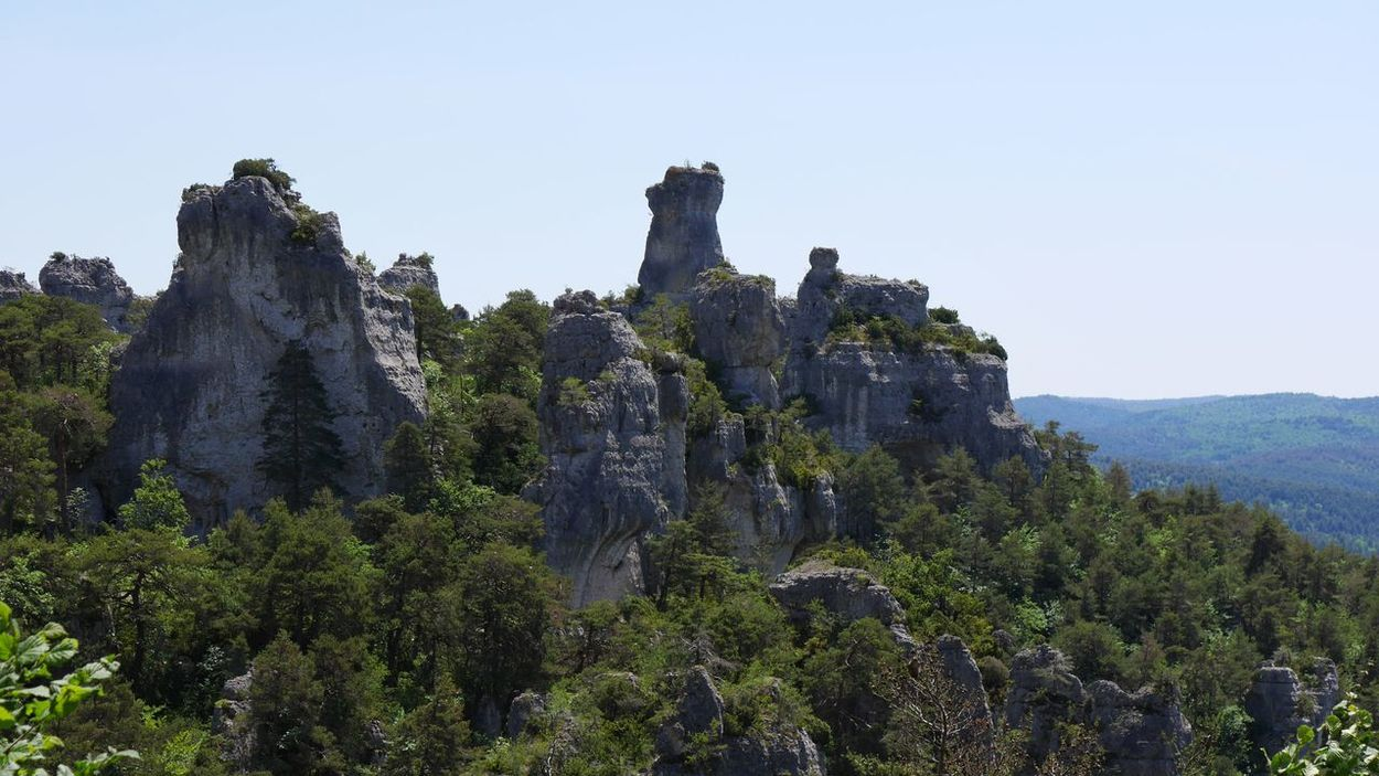 Chao de Montpellier Le Vieux - Outdoors Nature Growth Stone Rock Formation Rock - Object Landscape Randonnée Hiking Nature Forest Beauty In Nature Travel Destinations Occitanie Nature_collection Aveyron Natural Beauty Naturelovers Nature Photography Tourism No People Day Mountain
