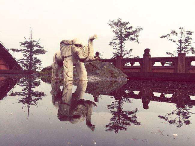 没有洗象池的月色,其实白天的景色也不错…… First Eyeem Photo