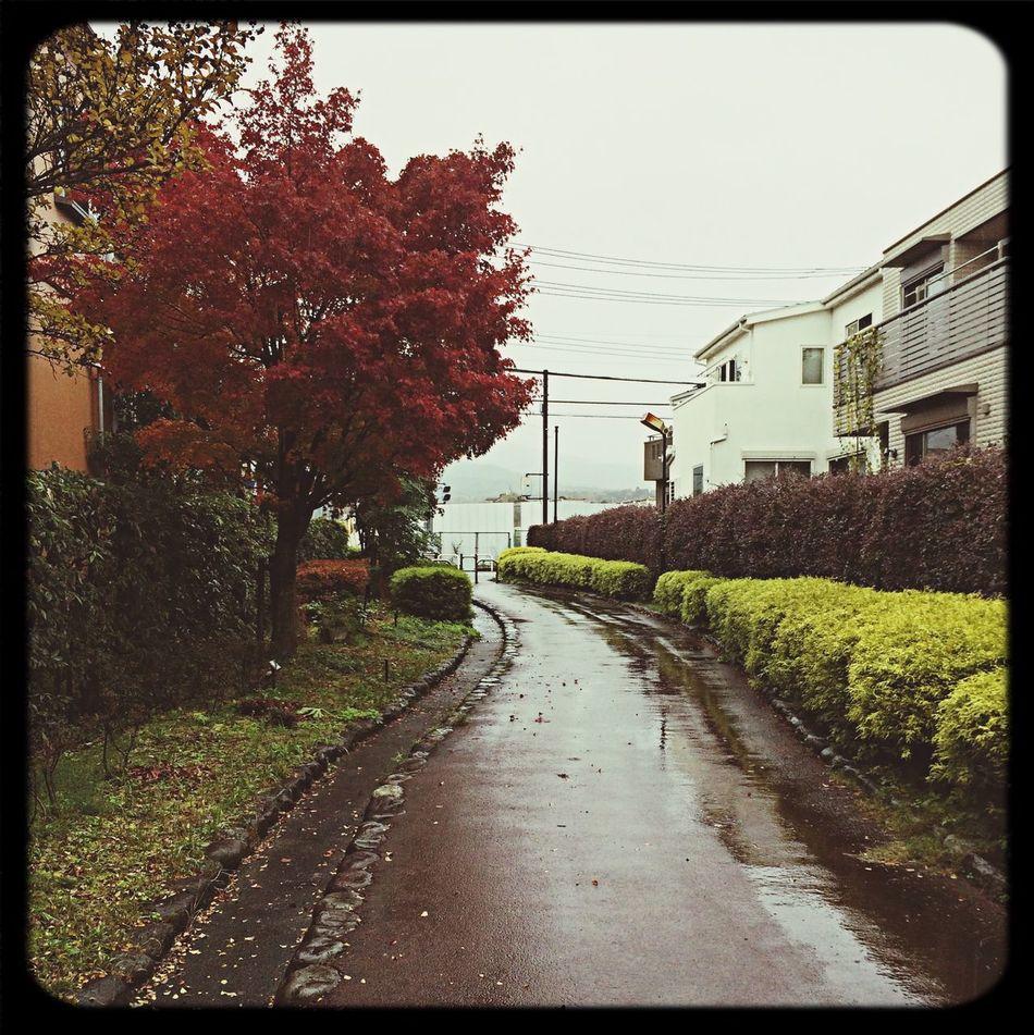 小道 First Eyeem Photo Odawara