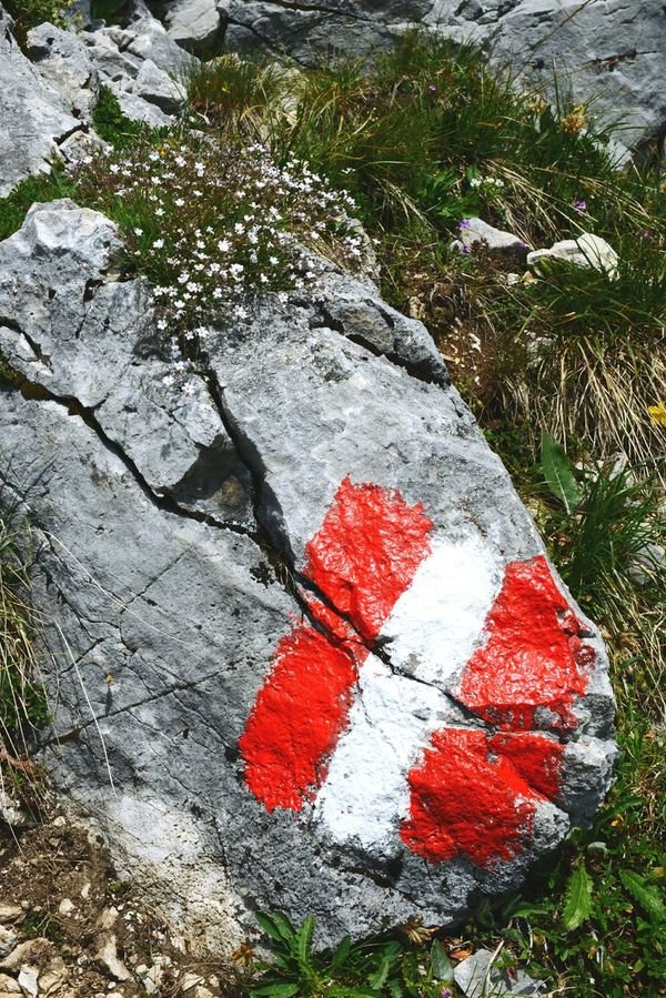 hiking in Rofan mountain area in Austria tyrol. Bandenberger Alps Alps Austria Brandenberger Brandenberger Alps Cracked European Alps Flag Flagg Grass Hiking Hochriss Moss Plant Red Rock Rock - Object Rofan Rofan-Alm Rofangebirge Rofangebirge Textured  Tirol  Trail Tranquility Tyrol